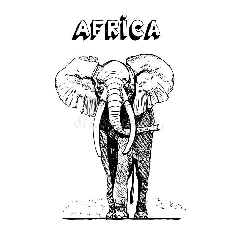 Elefante africano en sabana stock de ilustración