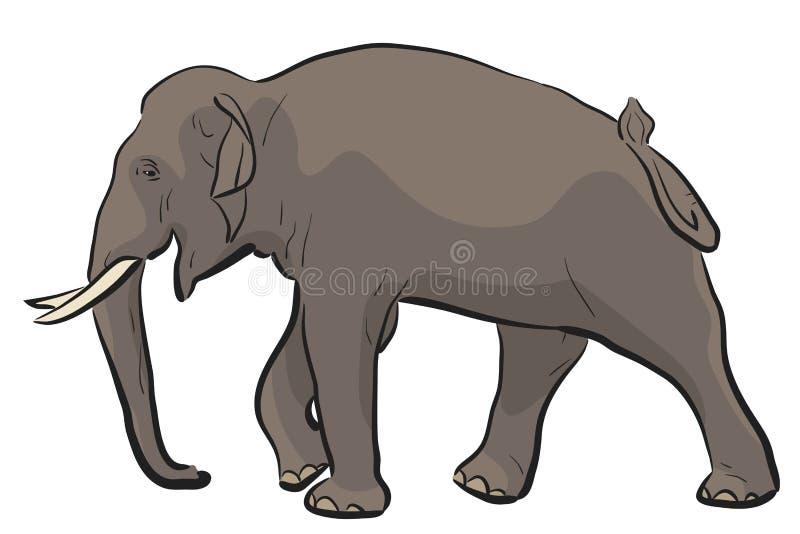 Elefante asiático stock de ilustración