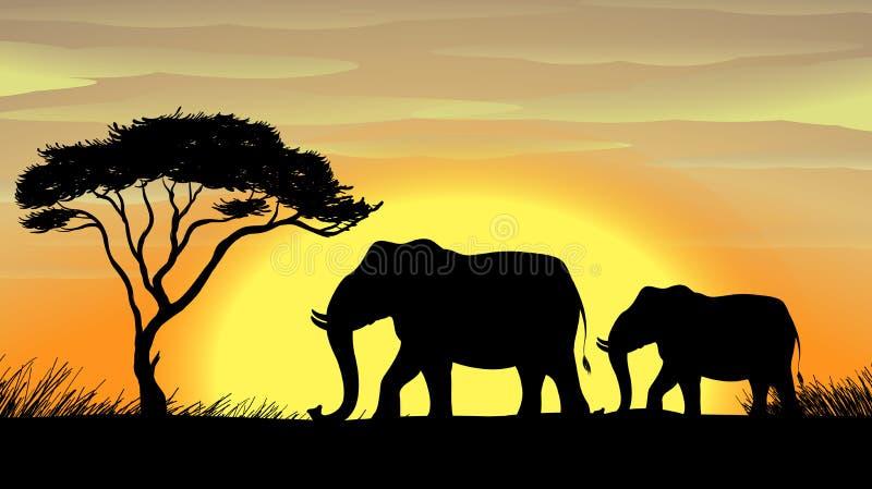 Elefante bajo un árbol stock de ilustración