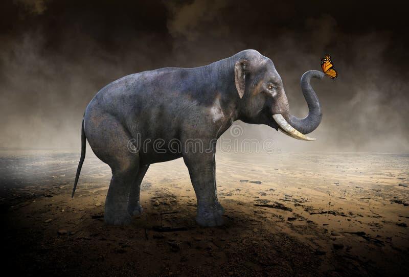 Elefante, borboleta de monarca, deserto ilustração royalty free