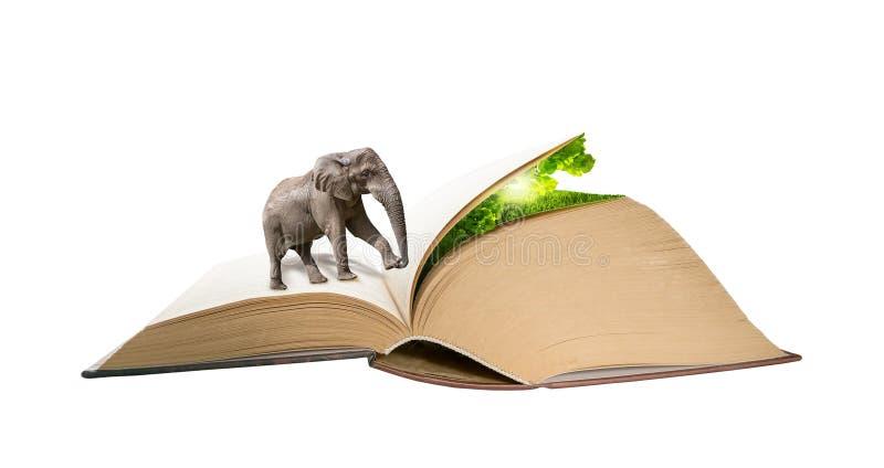 Elefante che cammina alle pagine del libro alla natura nascosta Concetto creativo di ecologia di istruzione Fondo magico di manip royalty illustrazione gratis
