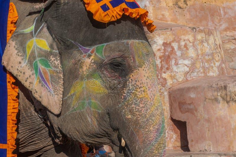 Elefante colorido en Jaipur, Rajasthán, la India foto de archivo libre de regalías