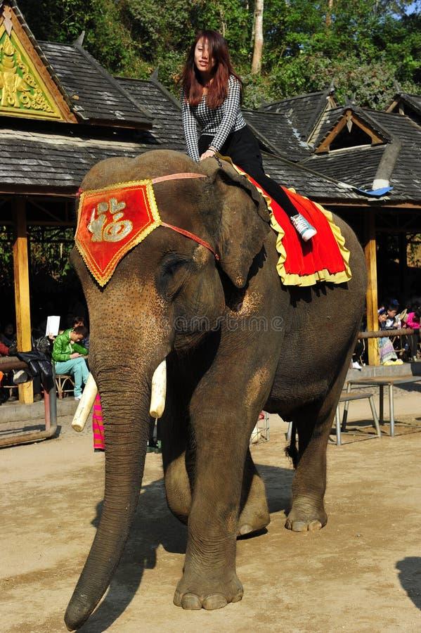 Elefante como ¼ turístico China de Attractionï imagen de archivo
