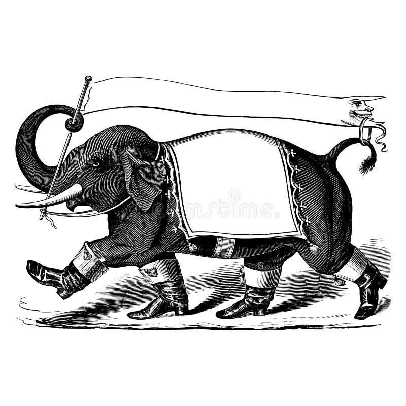 Elefante con las botas y la bandera, grabado del vintage ilustración del vector