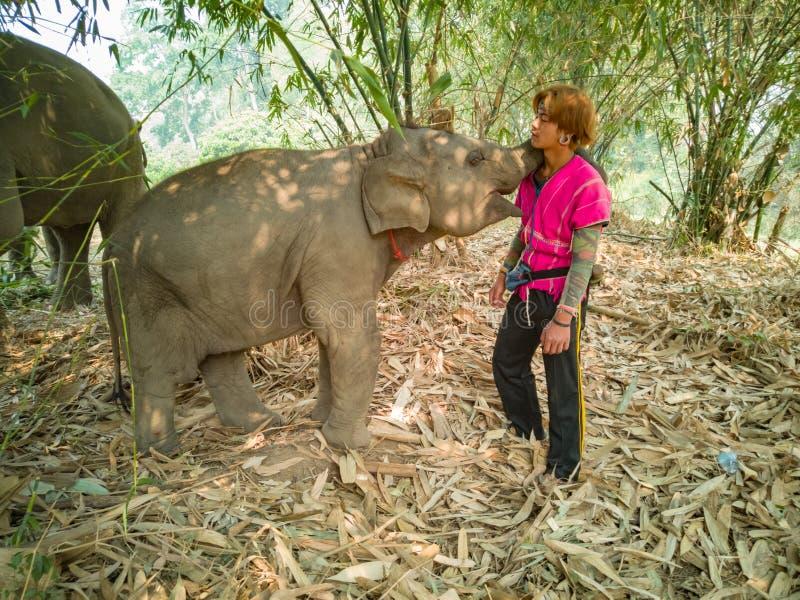 Elefante del bebé con la gente familiar de la tribu fotografía de archivo libre de regalías