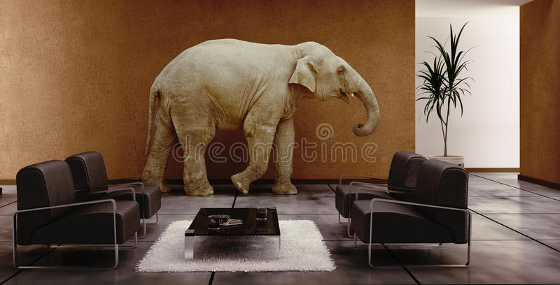 Elefante dell'interno immagini stock