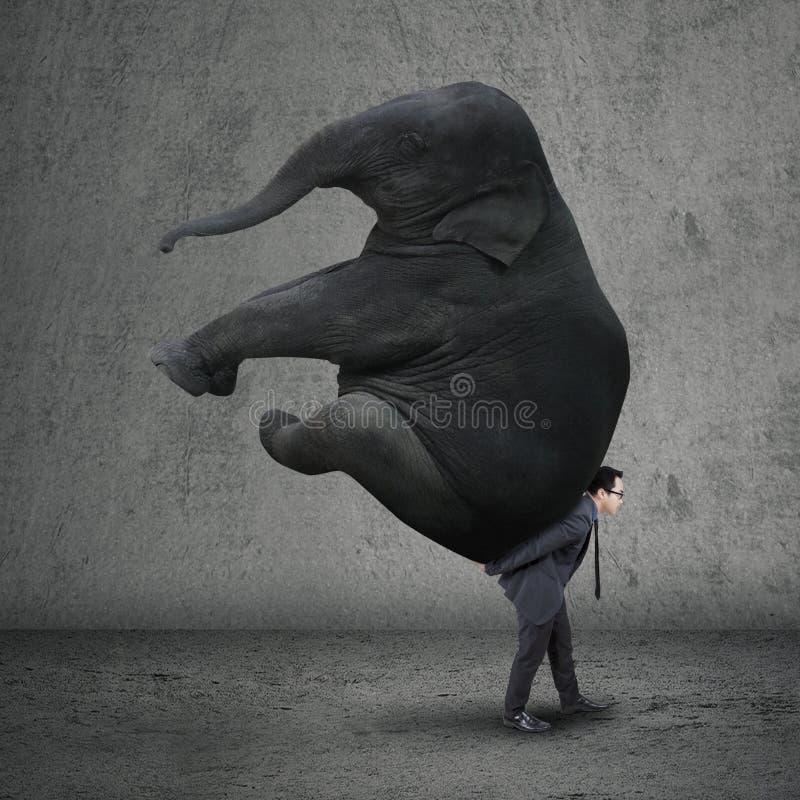 Elefante di trasporto dell'imprenditore maschio fotografia stock