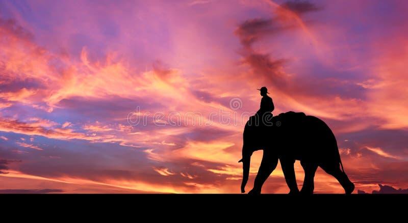 Elefante do passeio do Mahout imagem de stock
