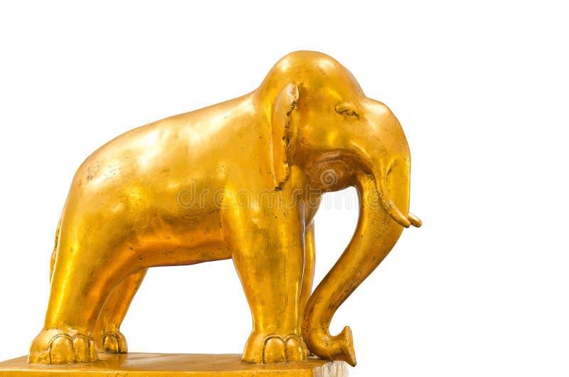 Elefante dorato fotografia stock libera da diritti