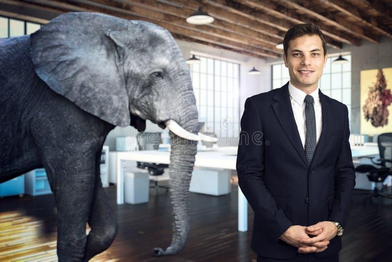 Elefante en el cuarto imagenes de archivo