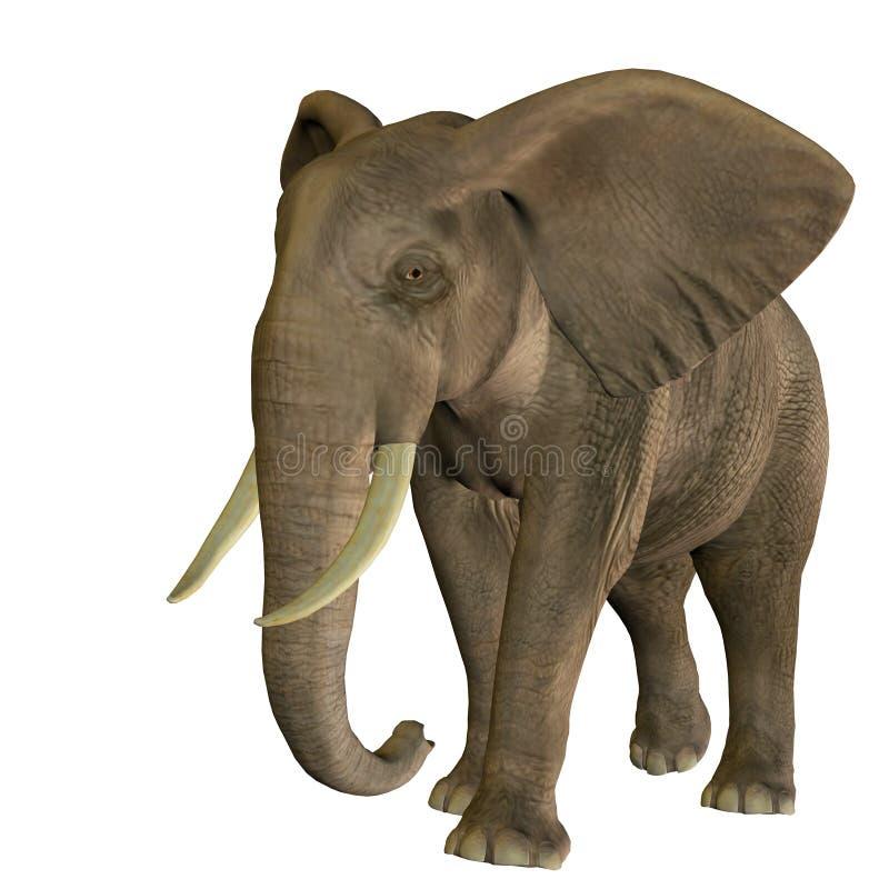 Elefante galopante ilustración del vector