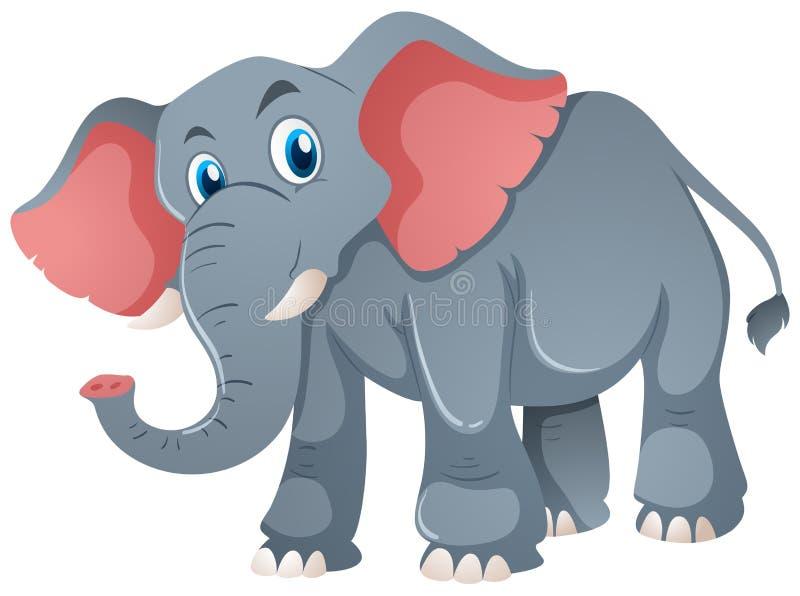 Elefante gris en el fondo blanco libre illustration