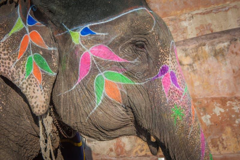 Elefante colorido en Jaipur, Rajasthán, la India imagenes de archivo