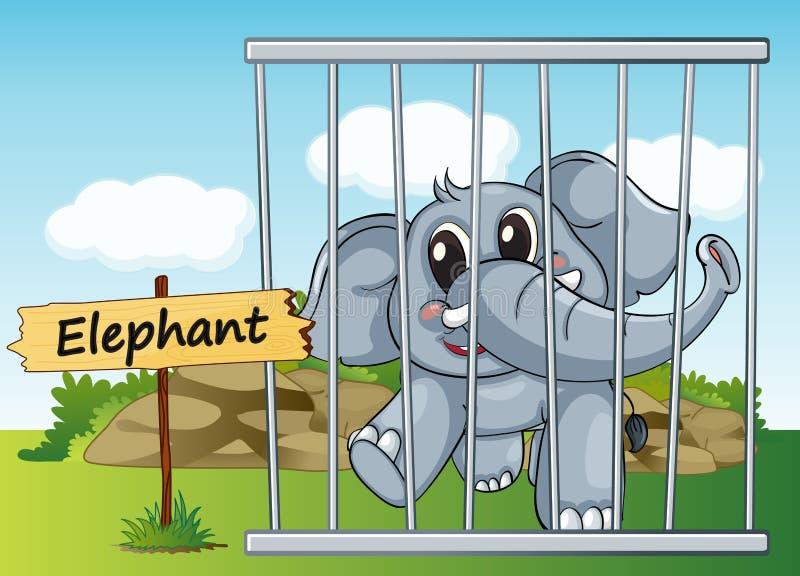 Elefante na gaiola ilustração stock