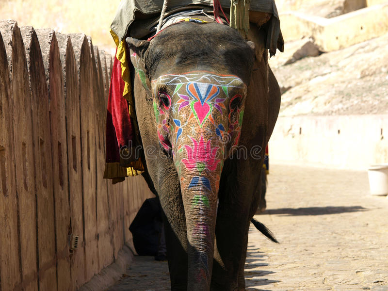 Elefante pintado imagenes de archivo