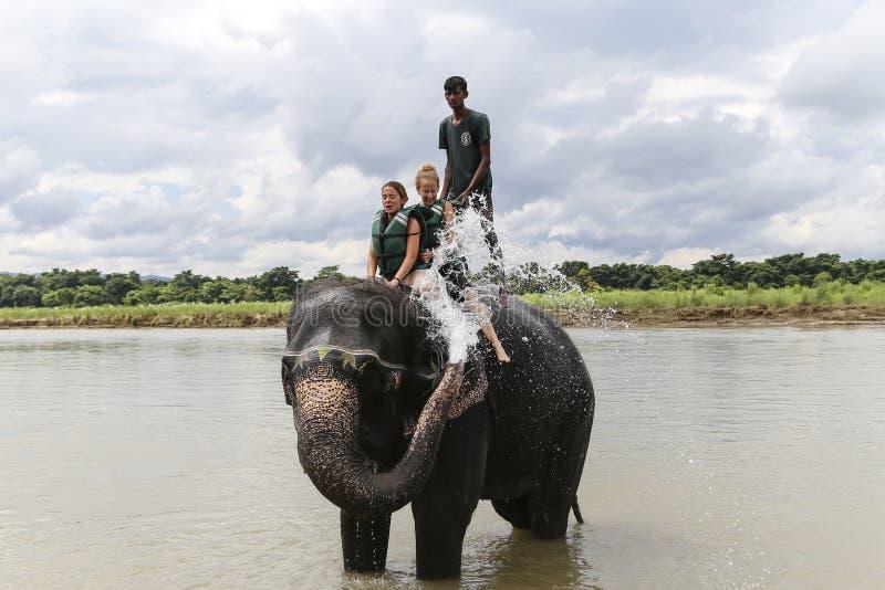 Elefante que banha-se em Nepal fotos de stock royalty free