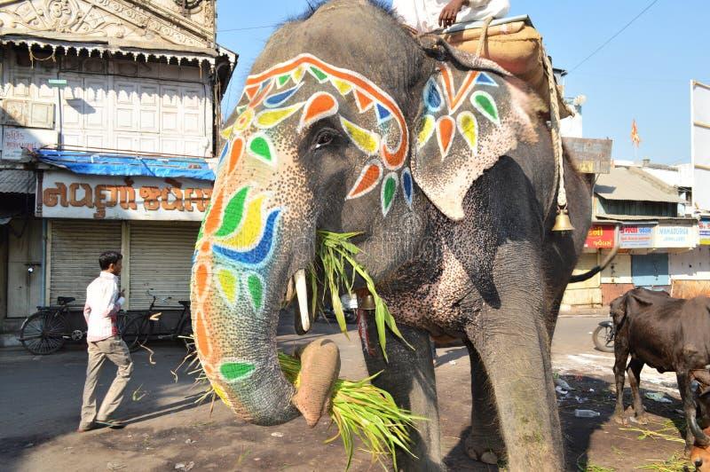 Elefante que come o café da manhã em Manekchawk, Ahmedabad fotos de stock royalty free