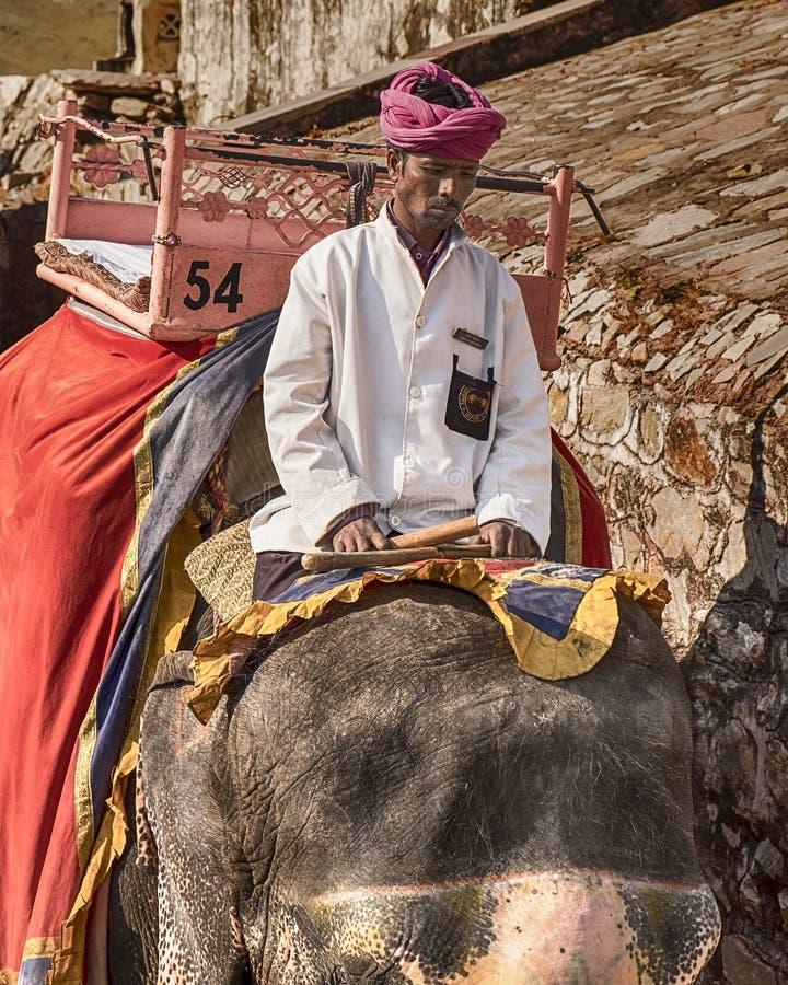 Elefante Rider At The Amber Fort foto de archivo