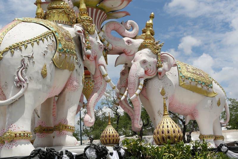 Elefante rosa Bangkok Tailandia fotografia stock libera da diritti