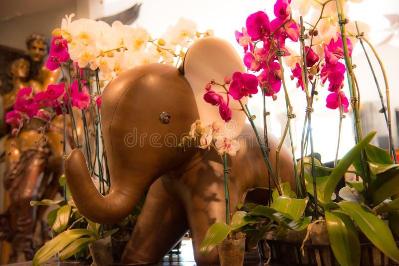 Elefante y orquídeas fotos de archivo libres de regalías