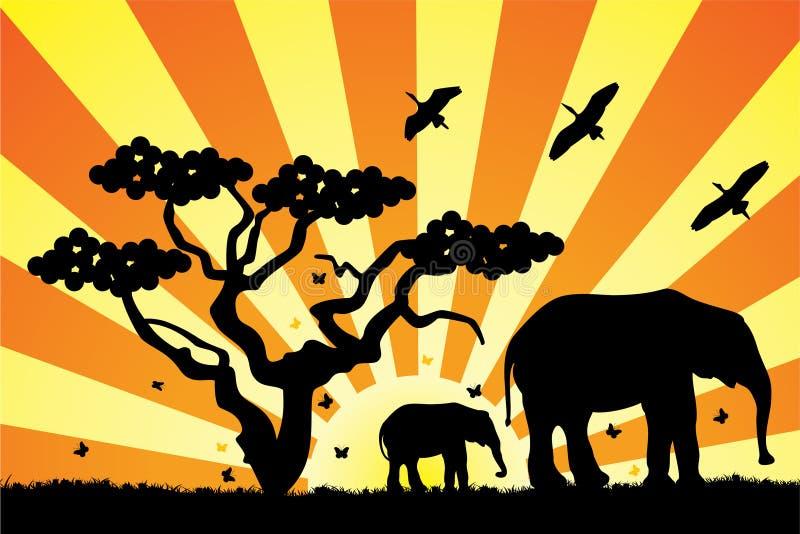 Elefanten in Afrika stock abbildung