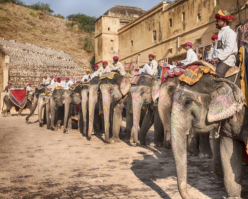Elefanten bei Amber Fort lizenzfreie stockfotos