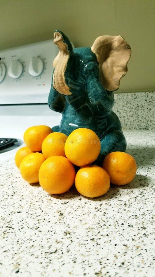 Elefanten und Orangen lizenzfreie stockfotos