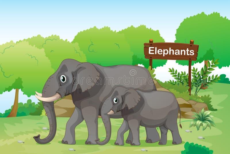 Elefanter med en träsignage baktill royaltyfri illustrationer