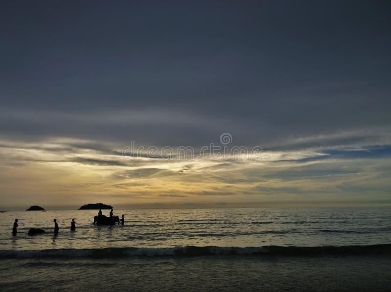Elefanter som badar i havet under solnedgång Koh Chang ö, Thailand arkivbild