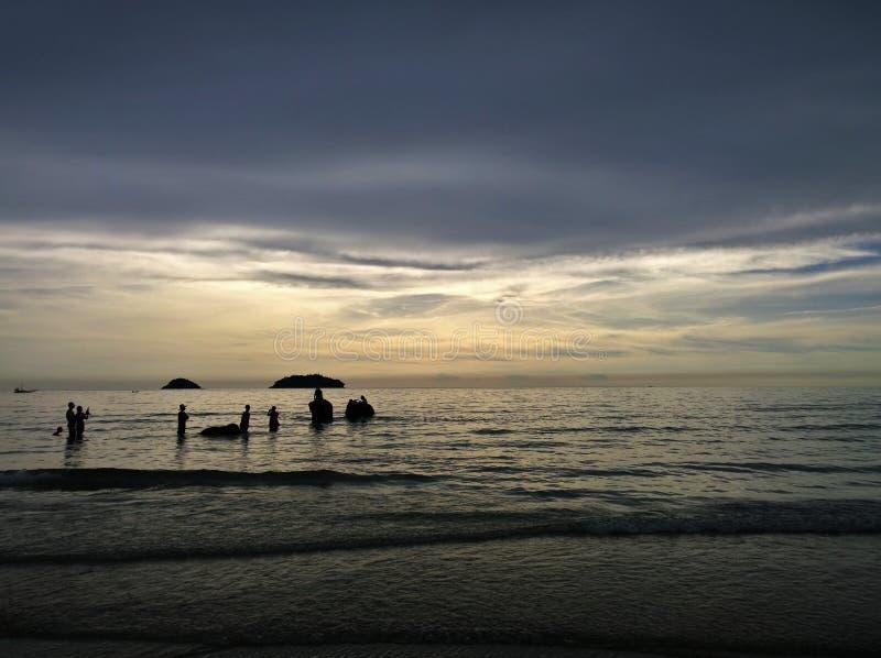 Elefanter som badar i havet under solnedgång Koh Chang ö, Thailand royaltyfria bilder