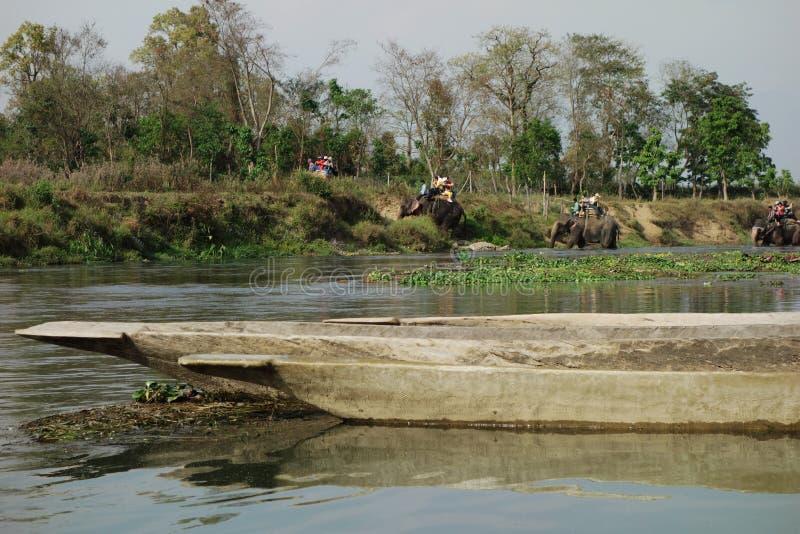 Elefanter som korsar en flod i Nepal royaltyfri bild