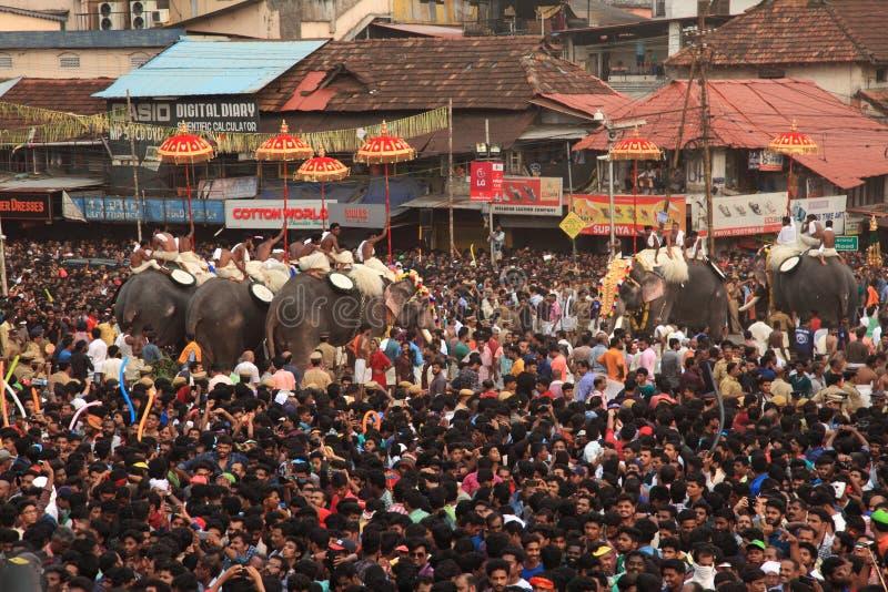 elefantes decorados en Thrissur pobre imagen de archivo libre de regalías