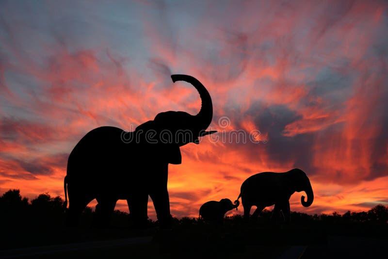 Elefantes en una puesta del sol de Serengety fotografía de archivo