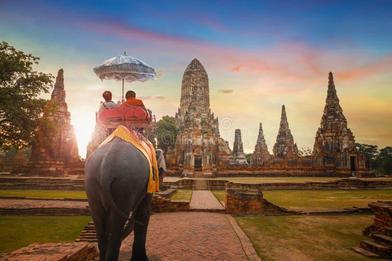 Elefantes no templo de Wat Chaiwatthanaram no parque histórico de Ayuthaya, um local do patrimônio mundial do UNESCO, Tailândia fotos de stock