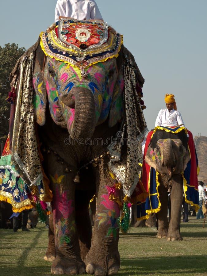 Elefantes pintados na parada foto de stock