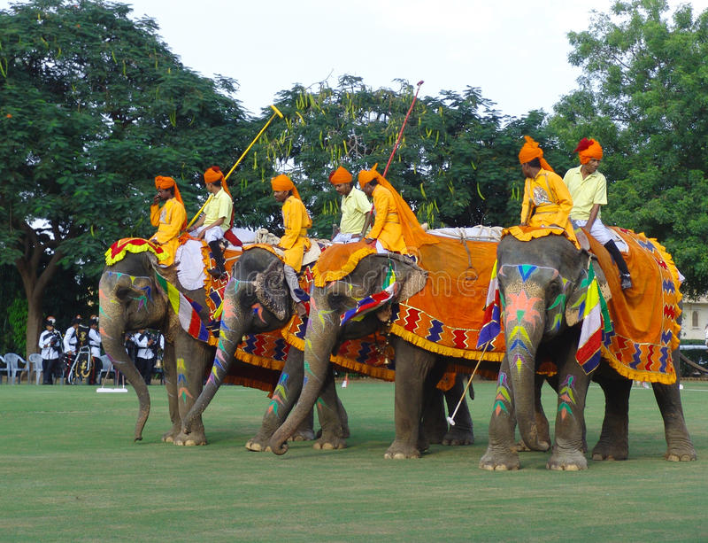 elefantfestival india jaipur arkivbild