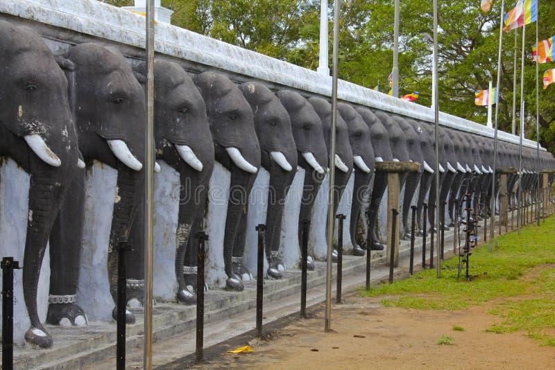 Elefantfris, Ruvanvelisaya Stupa, Sri Lanka arkivbilder