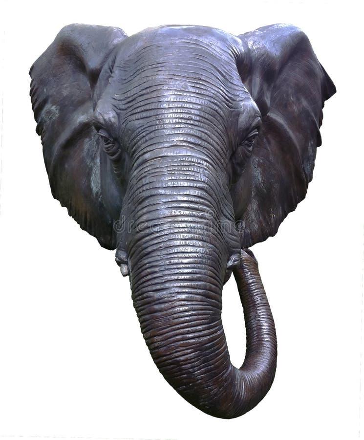 elefanthuvud royaltyfri bild