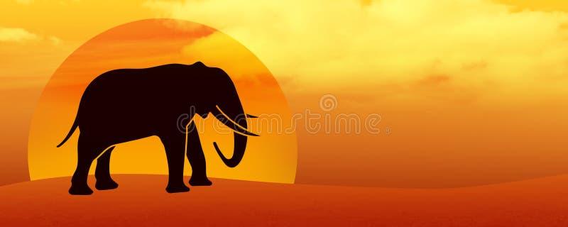 Elefantkontur i öknen på solnedgången vektor illustrationer