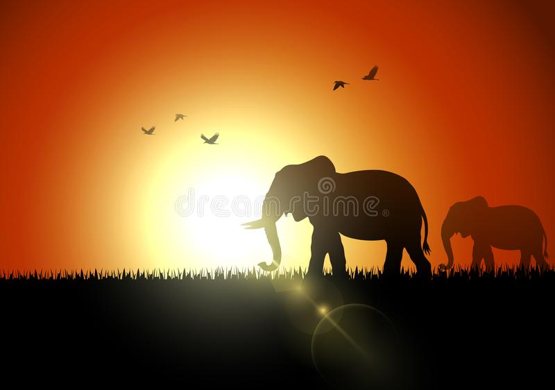 Elefantkontursolnedgång på savanah stock illustrationer