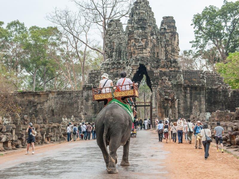Elefantritt till Angor Thom fotografering för bildbyråer
