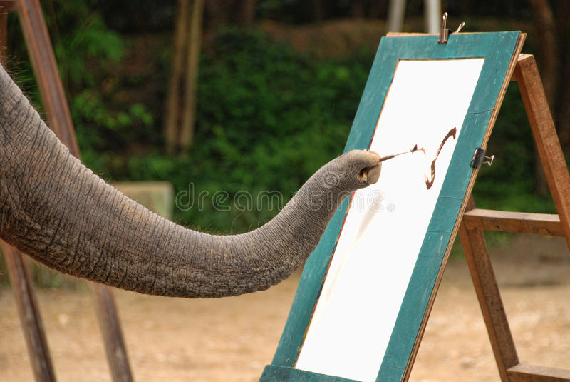 ElefantShow, Changmai, Thailand royaltyfri bild