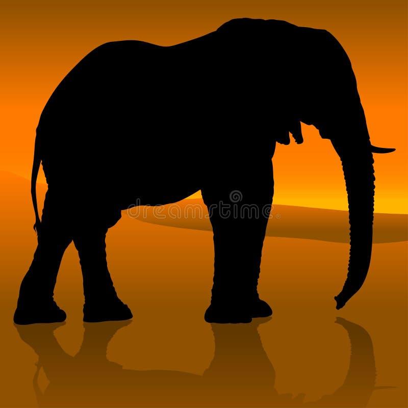 Elefantsolnedgång stock illustrationer