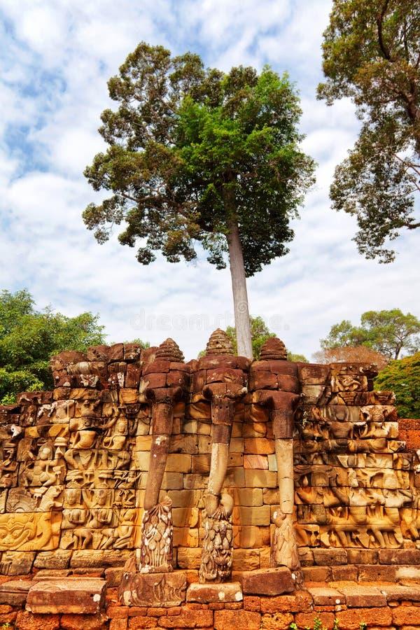 Elefantterrass, Ankgor Thom arkivbilder