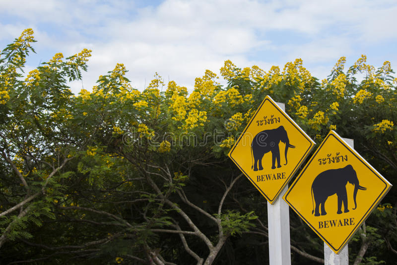 Elefantzeichen stockfotos