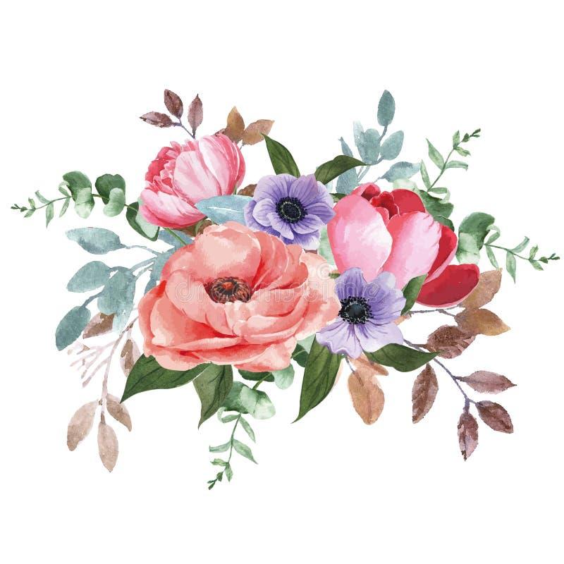 Elegância botânica que floresce, projeto do ramalhete da aquarela da flor da ilustração do vetor da cópia ilustração stock
