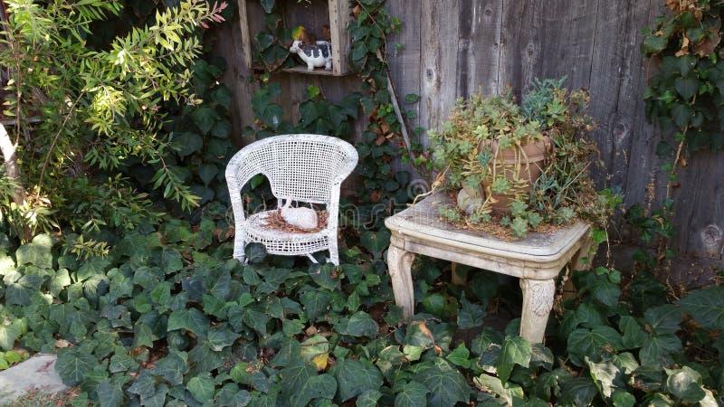 Elegância do quintal foto de stock royalty free