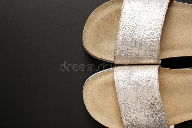 Eleganccy kobiety srebra buty obraz royalty free
