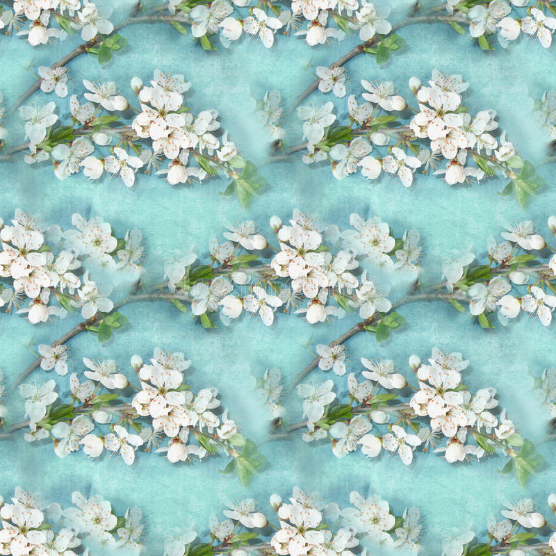 Elegance floral seamless pattern. Blossoming apple-tree branches. Blooming tree texture. Cherry blossom. Endless texture can be used for wallpaper, pattern stock images