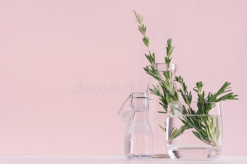 Elegance home decor - fragrant bouquet fresh rosemary in glass vase and retro bottle on white table and fashion pink background. stock images